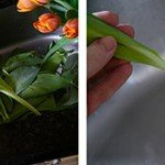 centros de mesa de flores