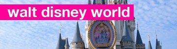 walt disney world  de luna de miel
