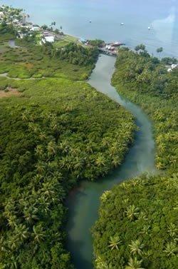 dominica isla