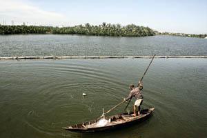 Pescador Vietnam