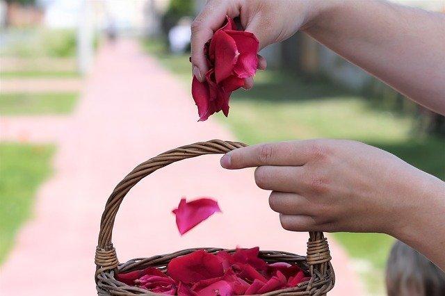 petalos-rosa-bodas