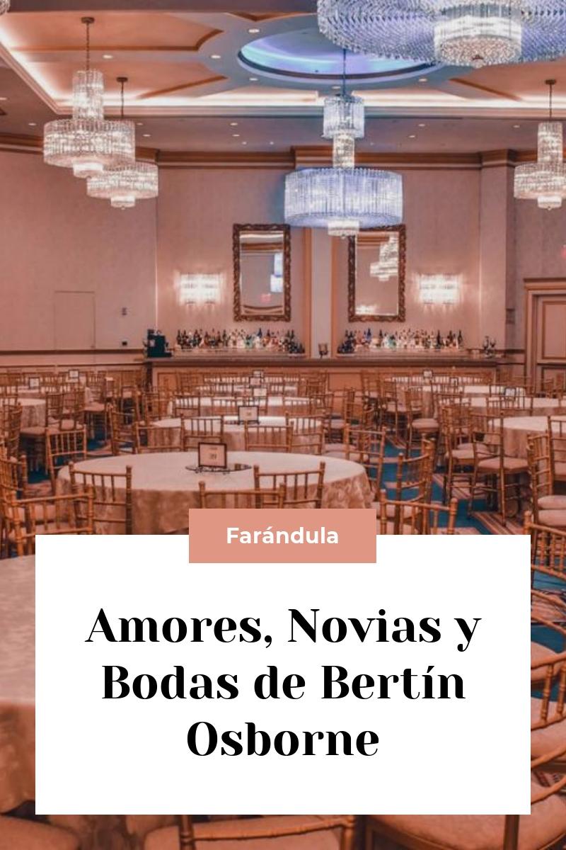 Amores, Novias y Bodas de Bertín Osborne