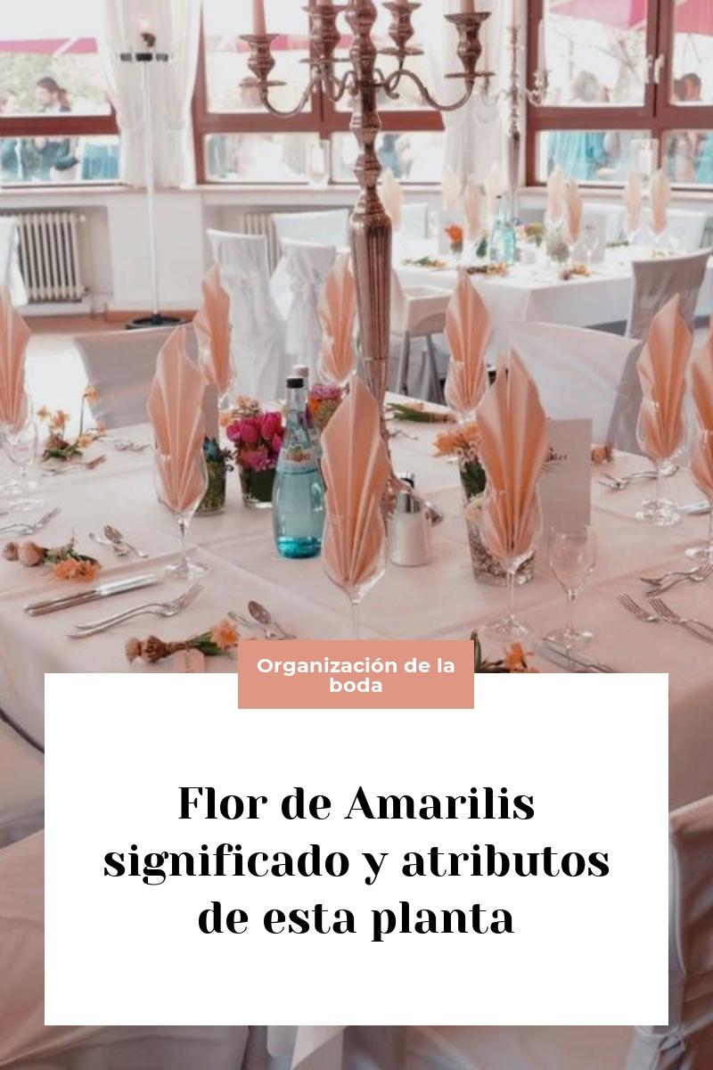 Flor de Amarilis significado y atributos de esta planta