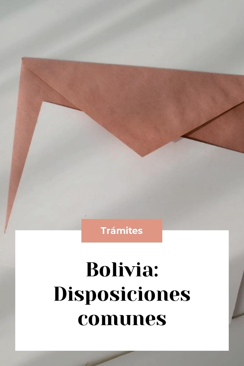 Bolivia: Disposiciones comunes