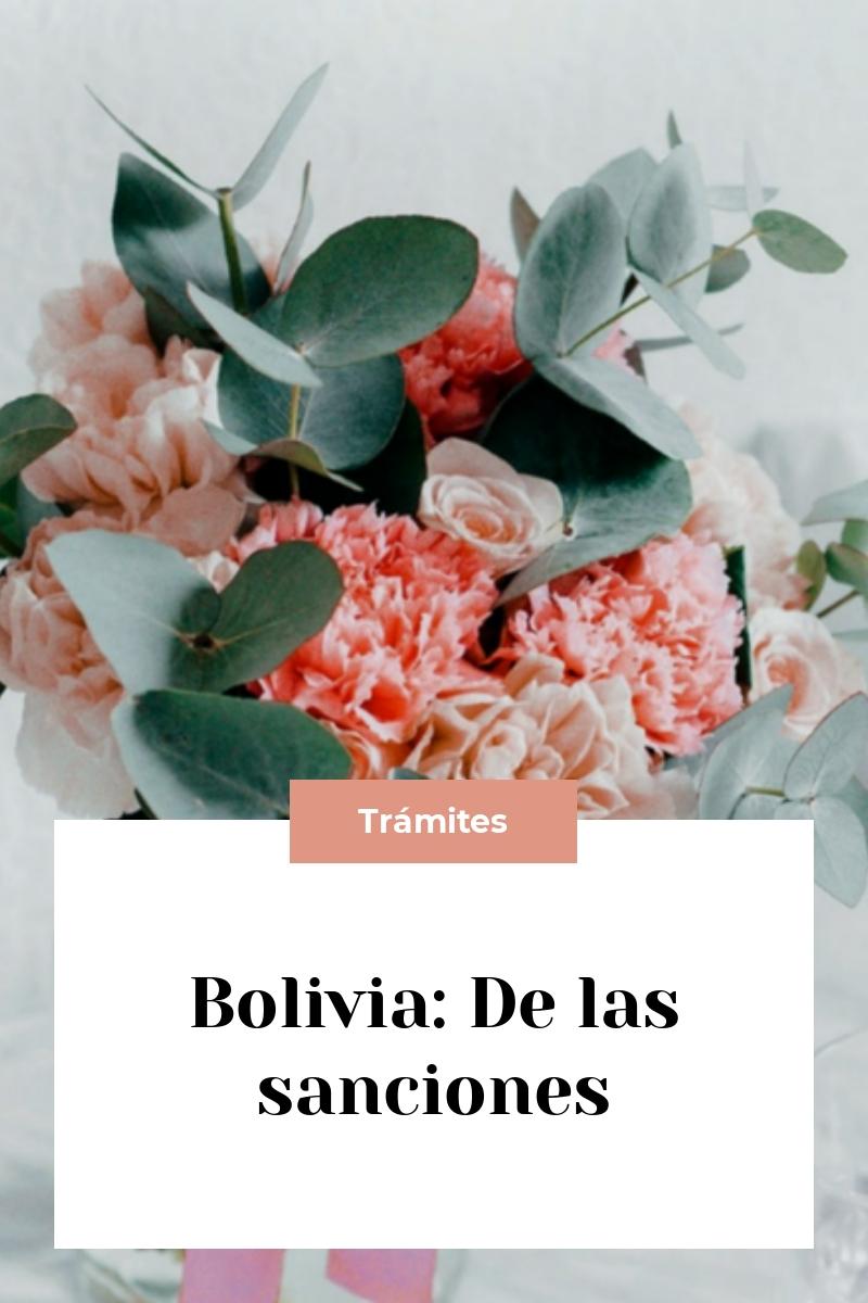 Bolivia: De las sanciones
