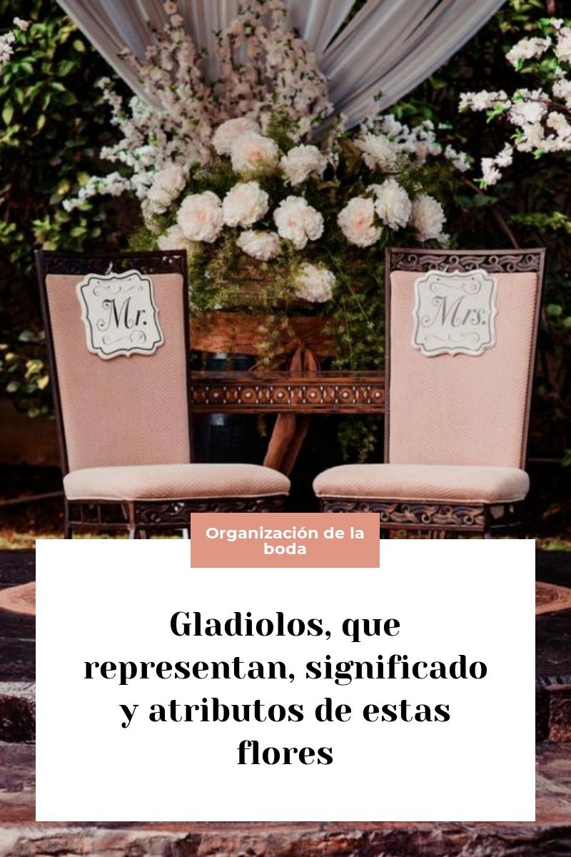 Gladiolos, que representan, significado y atributos de estas flores