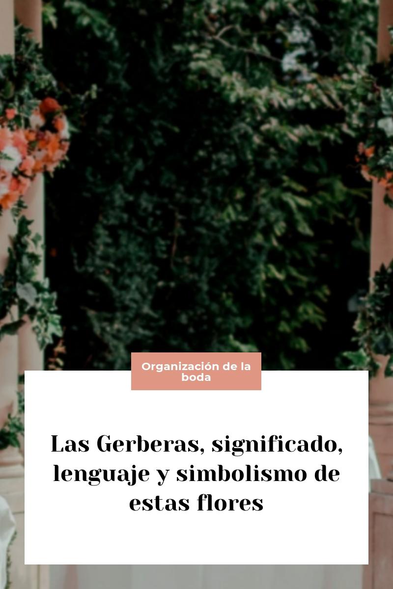 Las Gerberas, significado, lenguaje y simbolismo de estas flores