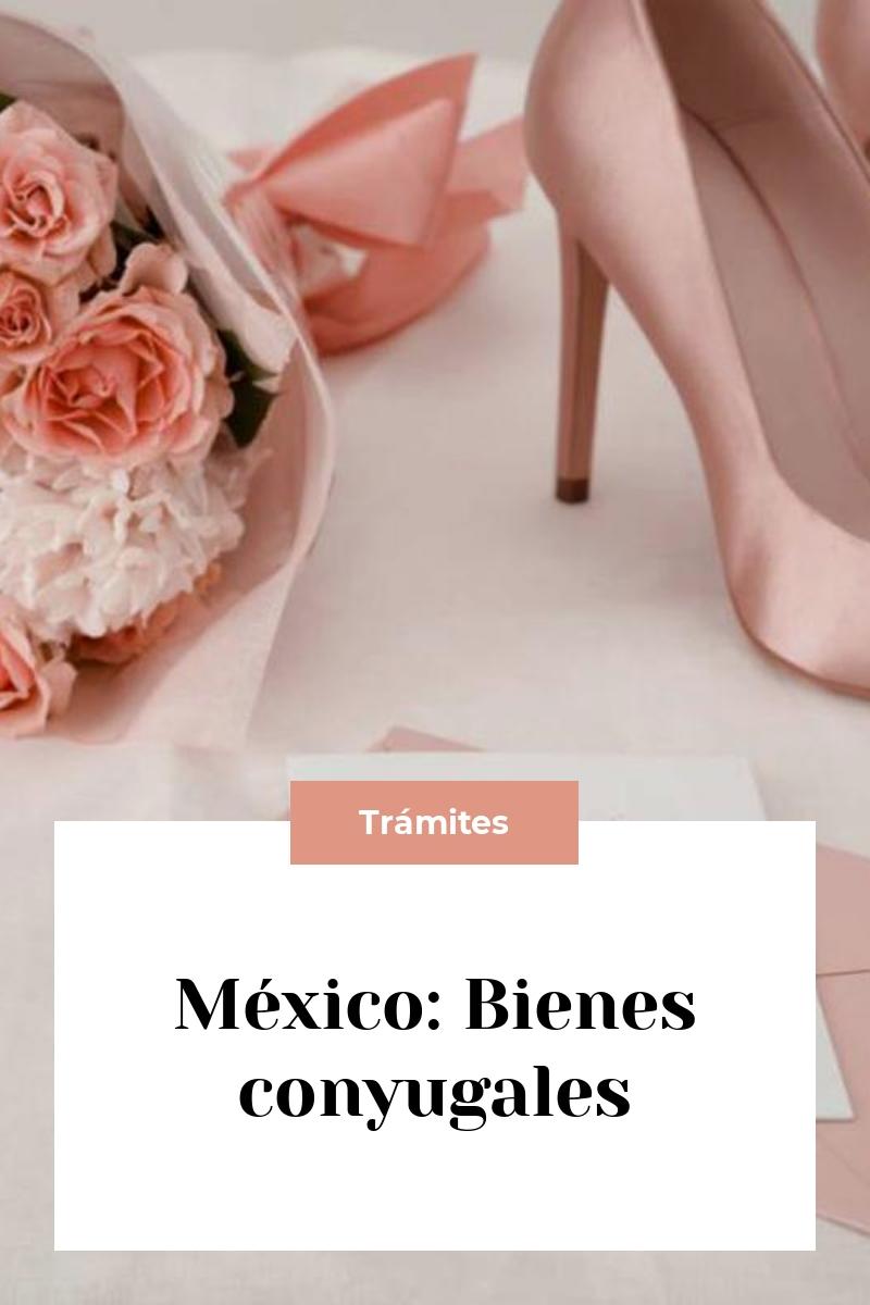 México: Bienes conyugales