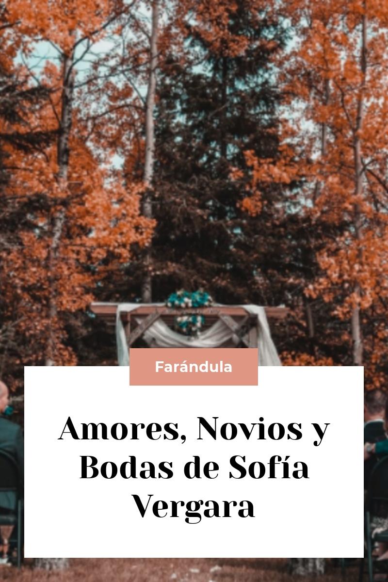 Amores, Novios y Bodas de Sofía Vergara