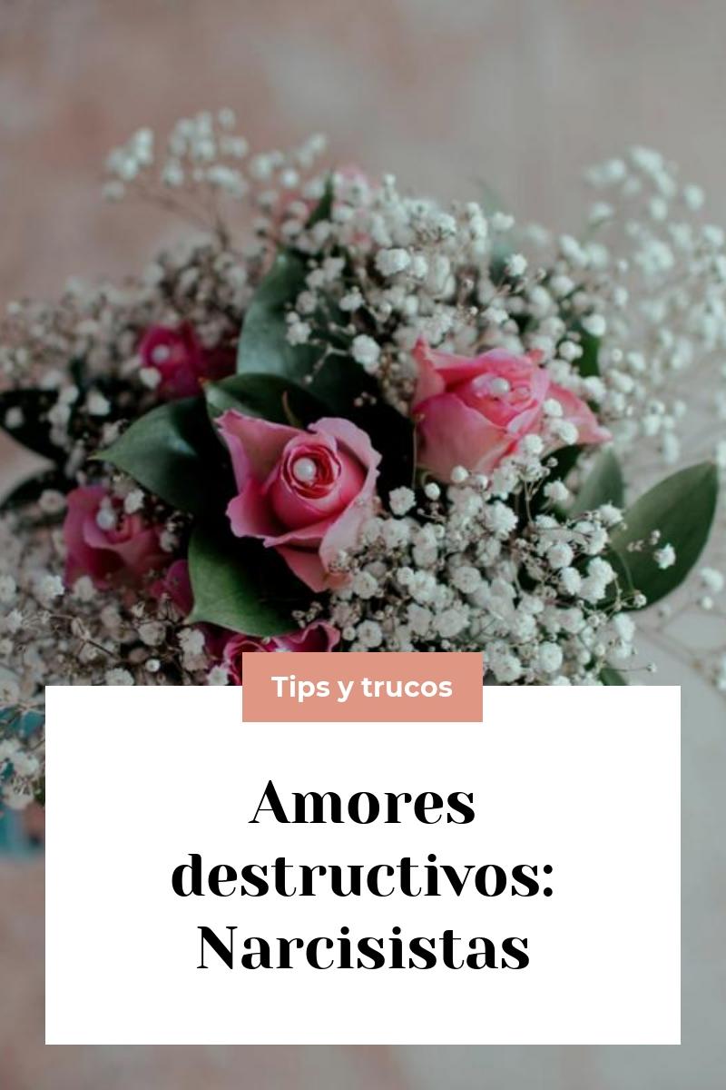 Amores destructivos: Narcisistas