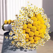 ramo florecillas