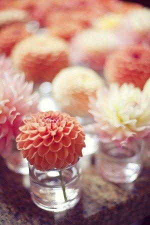 elizabethannedesigns.com flores