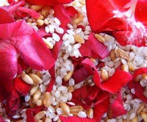 arroz-petalos